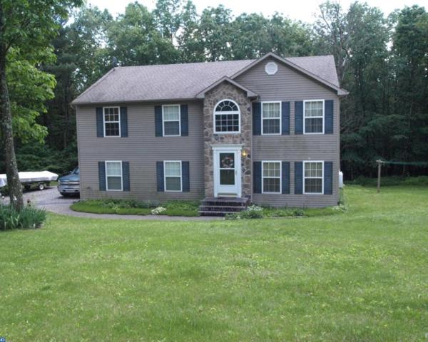 463 Rabbit Run Road, Tamaqua, PA 18211 (#6994418) :: Ramus Realty Group