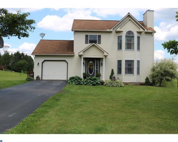 91 Woodland Drive, Auburn, PA 17922 (#6995320) :: Ramus Realty Group