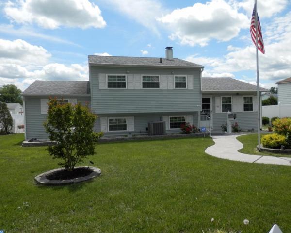 232 Princeton Avenue, Pemberton, NJ 08068 (MLS #6995561) :: The Dekanski Home Selling Team