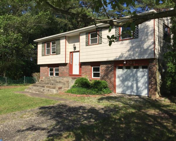 201 Manahawkin Trail, Browns Mills, NJ 08015 (MLS #6995614) :: The Dekanski Home Selling Team