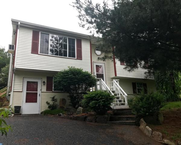 1268 Squaw Drive, Auburn, PA 17922 (#6996002) :: Ramus Realty Group