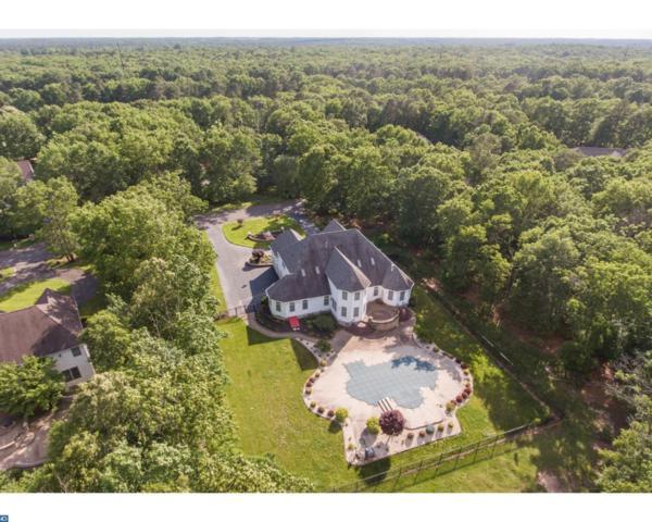 112 Running Deer Trail, Elmer, NJ 08318 (MLS #6996079) :: The Dekanski Home Selling Team