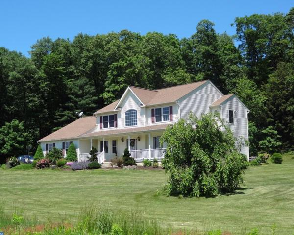 271 Pleasant Valley Road, Pine Grove, PA 17963 (#6996299) :: Ramus Realty Group