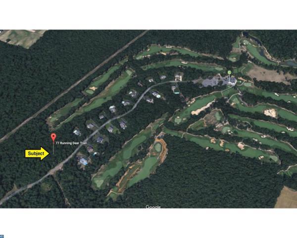 77 Running Deer Trail, Elmer, NJ 08318 (MLS #6996864) :: The Dekanski Home Selling Team