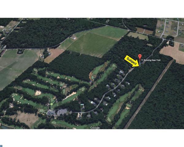 71 Running Deer Trail, Elmer, NJ 08318 (MLS #6996870) :: The Dekanski Home Selling Team