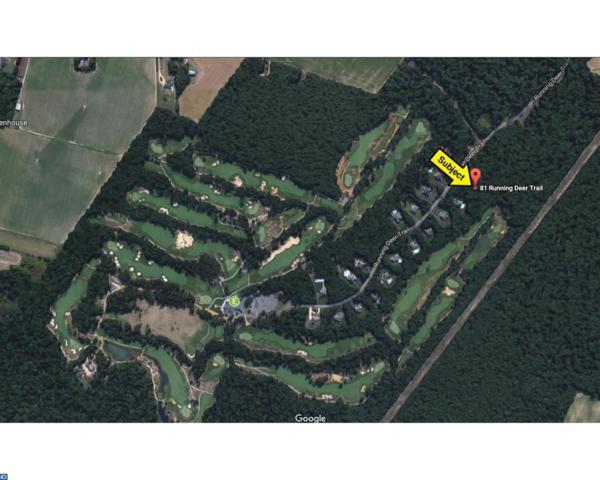 81 Running Deer Trail, Elmer, NJ 08318 (MLS #6996878) :: The Dekanski Home Selling Team