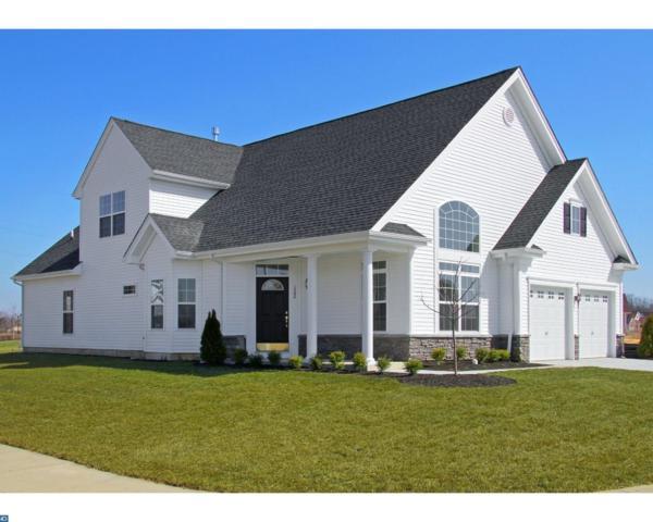 176 Field Loop Street, Glassboro, NJ 08028 (MLS #6999882) :: The Dekanski Home Selling Team
