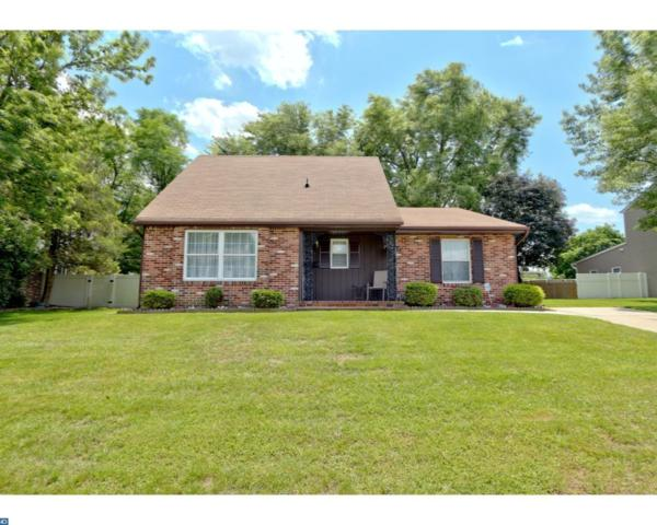 406 N Otter Branch Drive, Glendora, NJ 08029 (MLS #7000072) :: The Dekanski Home Selling Team