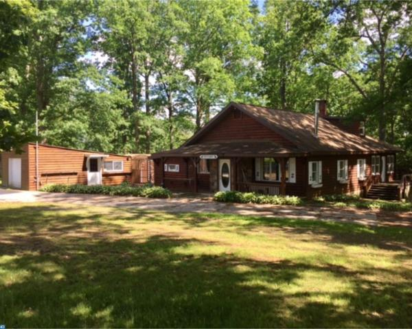1693 Breezy Acres Road, Orwigsburg, PA 17961 (#7000253) :: Ramus Realty Group