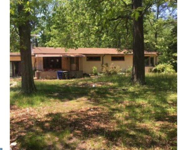 3915 N Blue Bell Road, Franklinville, NJ 08322 (MLS #7000327) :: The Dekanski Home Selling Team