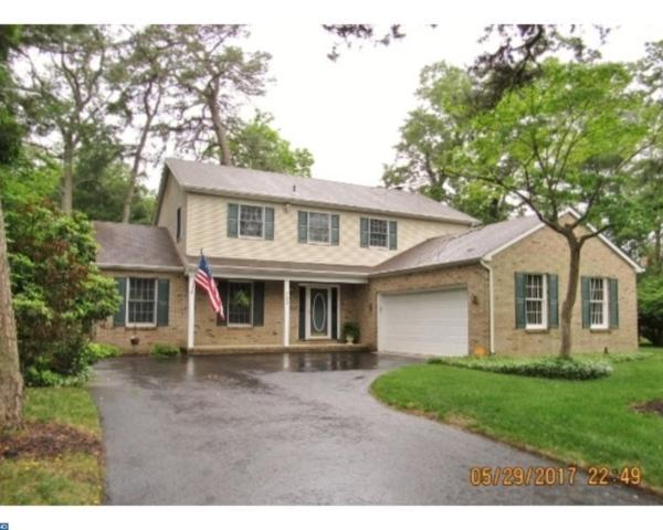 703 Mallard Street, Millville, NJ 08332 (MLS #7000617) :: The Dekanski Home Selling Team