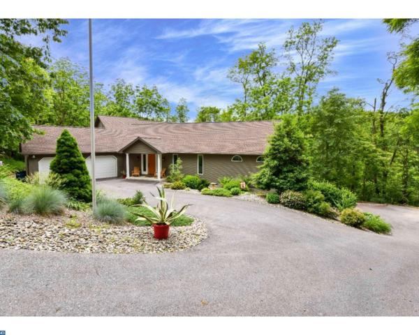 245 Blossom Court, Bernville, PA 19506 (#7000840) :: Ramus Realty Group