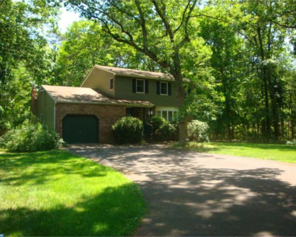 76 Richter Road, Tabernacle, NJ 08088 (MLS #7000928) :: The Dekanski Home Selling Team