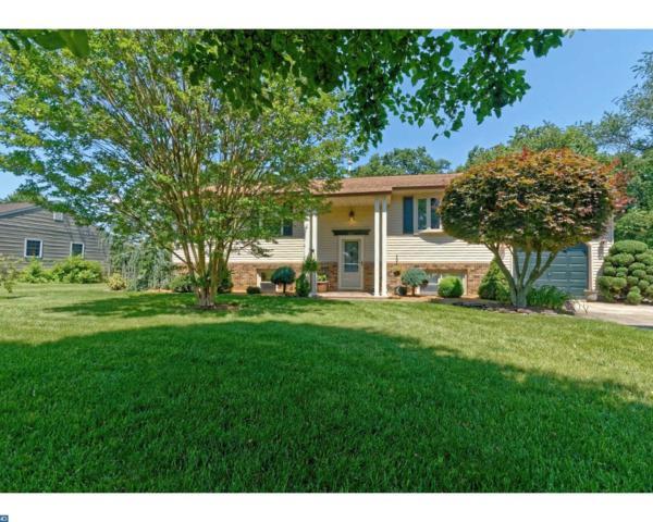 393 Catalba Avenue, Mickleton, NJ 08056 (MLS #7001576) :: The Dekanski Home Selling Team