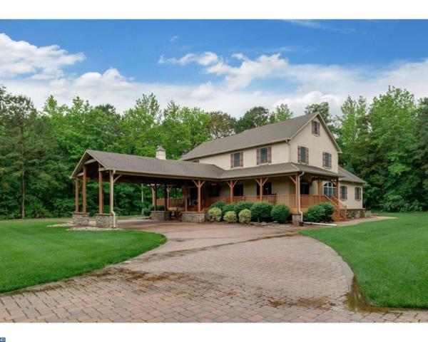 375 Rosenhayn Avenue, Upper Deerfield, NJ 08302 (MLS #7002197) :: The Dekanski Home Selling Team