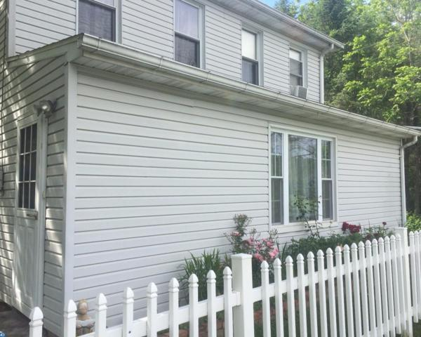 61 Meadow Drive, Schuylkill Haven, PA 17972 (#7002377) :: Ramus Realty Group