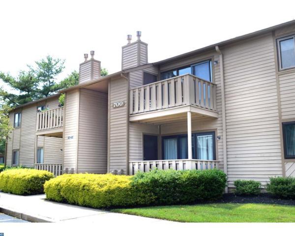 710 Woodhollow Drive, Marlton, NJ 08053 (MLS #7002490) :: The Dekanski Home Selling Team