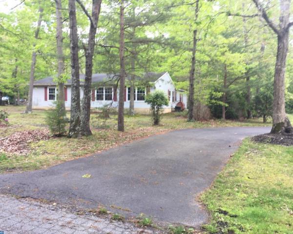 29 Mill Road, Shamong, NJ 08088 (MLS #7003265) :: The Dekanski Home Selling Team