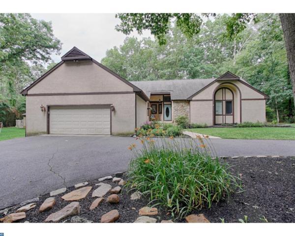 2290 Grant Avenue, Williamstown, NJ 08094 (MLS #7003772) :: The Dekanski Home Selling Team