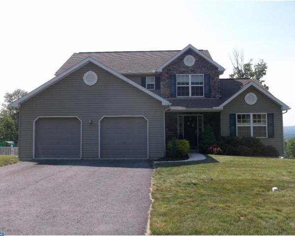416 Fern Road, Orwigsburg, PA 17961 (#7003962) :: Ramus Realty Group