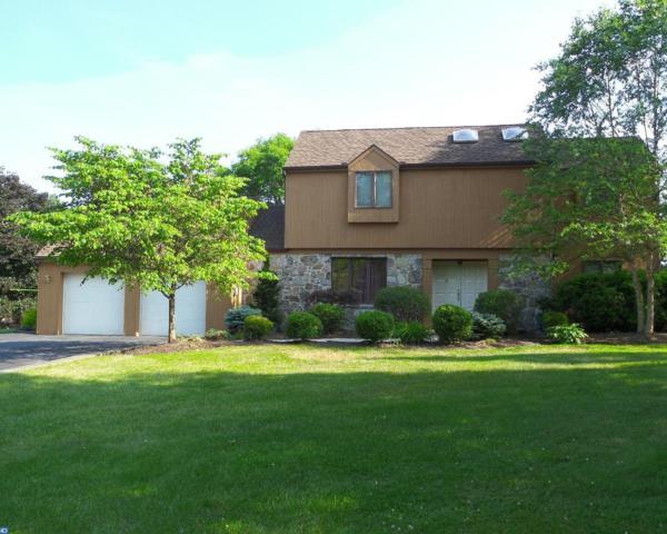 565 Scenic Drive, Bernville, PA 19506 (#7004005) :: Ramus Realty Group