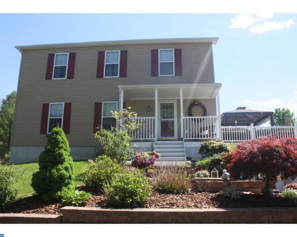 2548 Wynonah Drive, Auburn, PA 17922 (#7004127) :: Ramus Realty Group