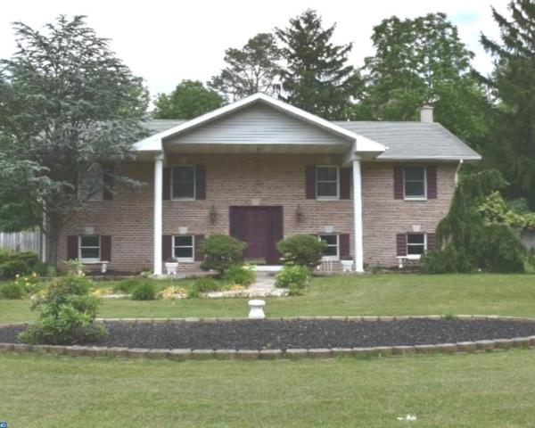 14 Reedsville Road, Schuylkill Haven, PA 17972 (#7004353) :: Ramus Realty Group