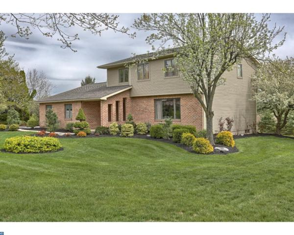 39 Hill Road, Bernville, PA 19506 (#7004623) :: Ramus Realty Group