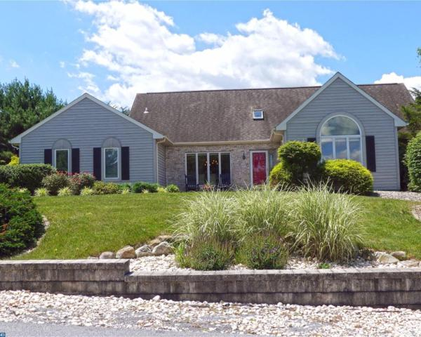 16 Orchard Place, Bernville, PA 19506 (#7005767) :: Ramus Realty Group
