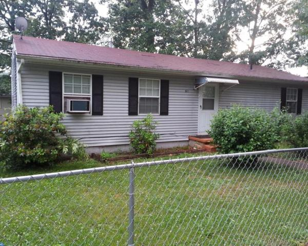 601 Evergreen Boulevard, Browns Mills, NJ 08015 (MLS #7006021) :: The Dekanski Home Selling Team