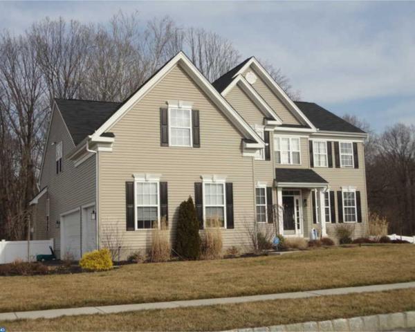 406 Winchester Terrace, Mullica Hill, NJ 08062 (MLS #7006069) :: The Dekanski Home Selling Team