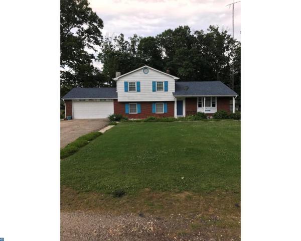 194 Big Oak Road, Bridgeton, NJ 08302 (MLS #7007190) :: The Dekanski Home Selling Team