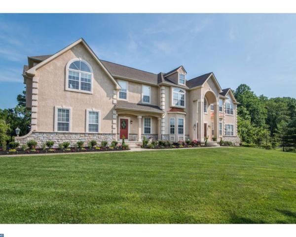 213 Shivers Run Court, Mullica Hill, NJ 08062 (MLS #7007755) :: The Dekanski Home Selling Team