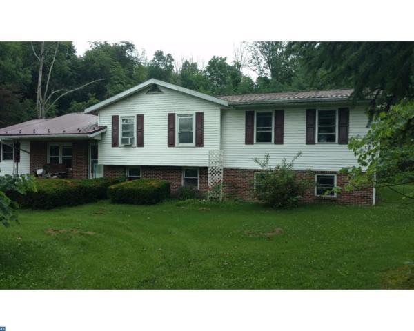 467 Green Tree Drive, Auburn, PA 17922 (#7008501) :: Ramus Realty Group