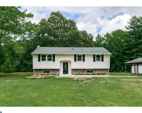 784 Tuckahoe Road, Franklin Twp, NJ 08360 (#7008848) :: Hardy Real Estate Group