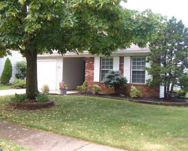 15 Chestnut Hill Lane, Columbus, NJ 08022 (MLS #7010242) :: The Dekanski Home Selling Team