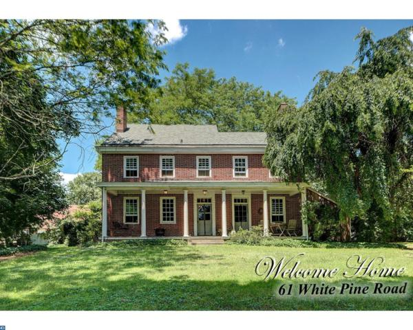 61 White Pine Road, Chesterfield, NJ 08515 (MLS #7010749) :: The Dekanski Home Selling Team