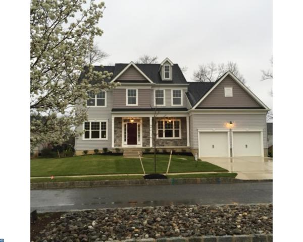 18 Monet Drive, Mays Landing, NJ 08330 (MLS #7015090) :: The Dekanski Home Selling Team