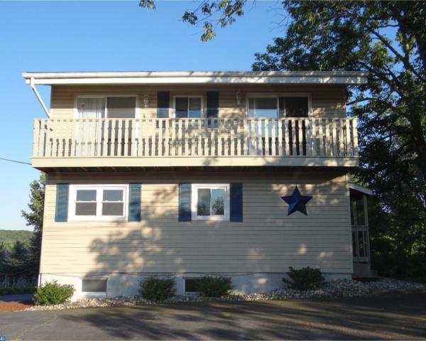 1579 Stag Drive, Auburn, PA 17922 (#7016506) :: Ramus Realty Group
