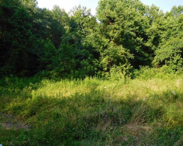420 Pierson Road, Woodstown, NJ 08098 (#7017787) :: Remax Preferred | Scott Kompa Group