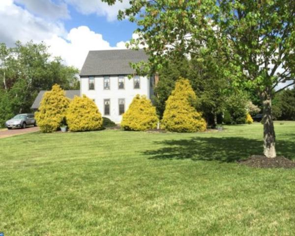 1176 Lake Point Cove, Pittsgrove, NJ 08318 (MLS #7019815) :: The Dekanski Home Selling Team