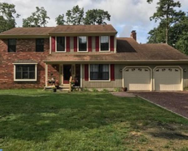 1074 Swans Way, Pittsgrove, NJ 08318 (MLS #7021379) :: The Dekanski Home Selling Team