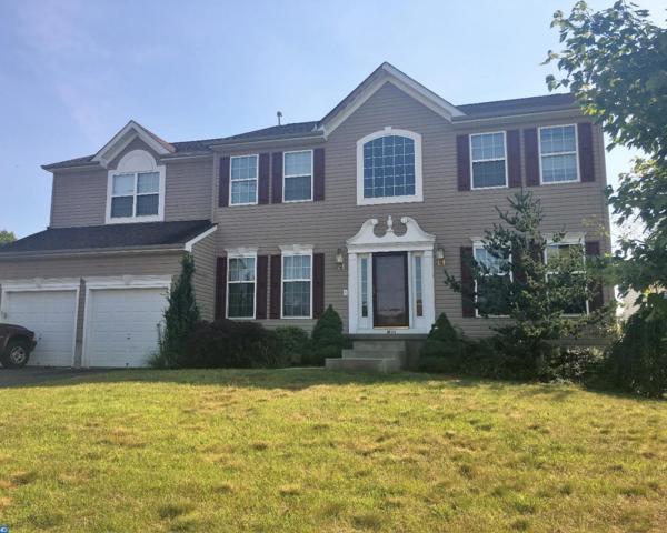 1401 Ashtead Lane, Williamstown, NJ 08094 (MLS #7022226) :: The Dekanski Home Selling Team