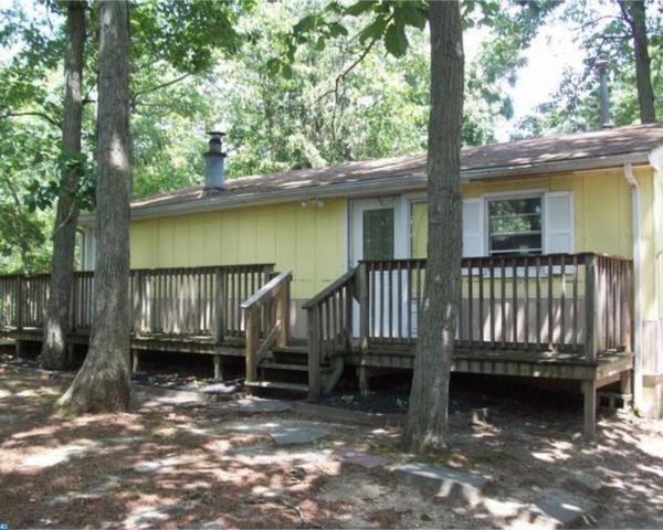 7204 Battle Lane, Millville, NJ 08332 (MLS #7023163) :: The Dekanski Home Selling Team