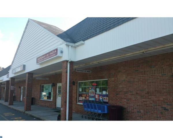 217 Clarksville Road, West Windsor, NJ 08550 (MLS #7028005) :: The Dekanski Home Selling Team