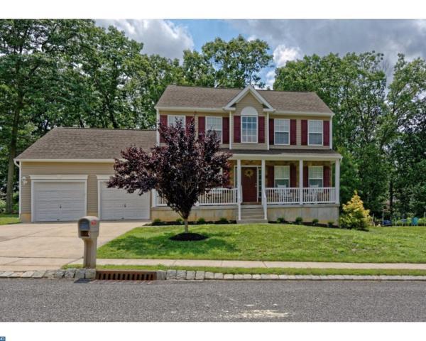 41 Tomasello Drive, Millville, NJ 08332 (MLS #7028351) :: The Dekanski Home Selling Team