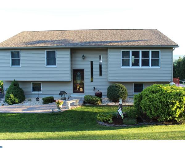 223 Schuylkill Mountain Road, Schuylkill Haven, PA 17972 (#7029723) :: Ramus Realty Group
