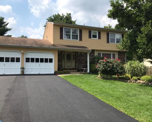 429 Ewingville Road, Ewing Twp, NJ 08638 (MLS #7029736) :: The Dekanski Home Selling Team