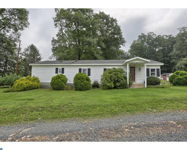 3 Blue Gill Lane, Pine Grove, PA 17963 (#7030319) :: Ramus Realty Group