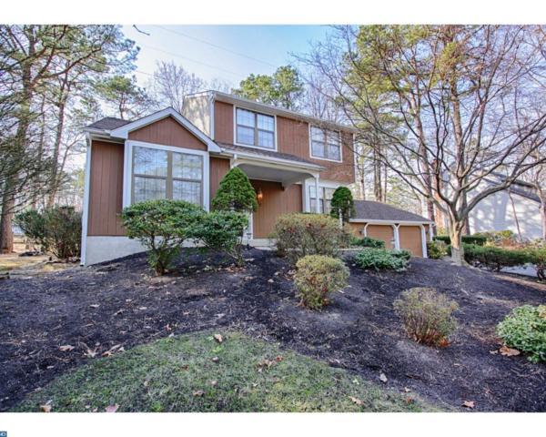 185 William Feather Drive, Voorhees, NJ 08043 (MLS #7030456) :: The Dekanski Home Selling Team
